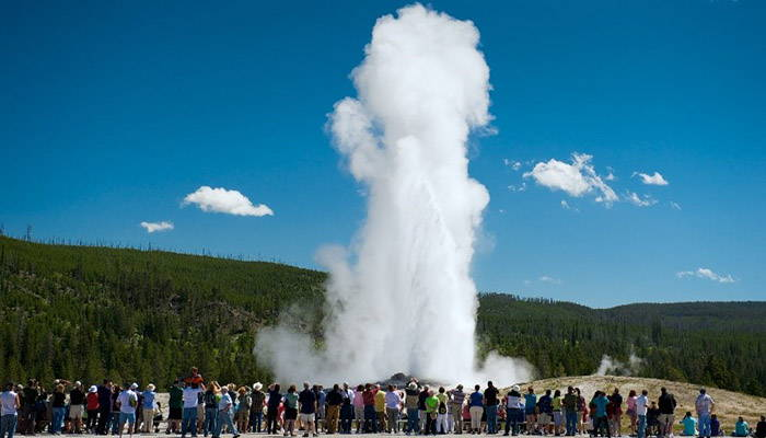 A geyser erupting while a large group watches